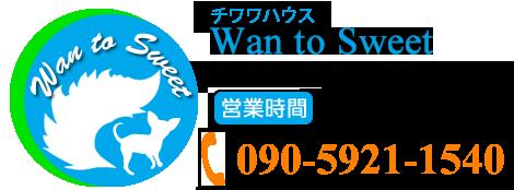 大阪府交野市でかわいいチワワをお探しならチワワ専門ブリーダーWan to Sweetにお任せください!
